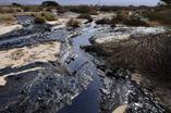 水库液压油污染